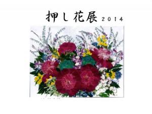 押し花展2014_catch2